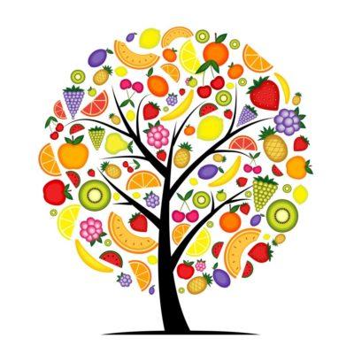 Orientarsi oggi fra ciò che è sano | Aida Mele Magazine