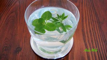 Bevande dissetanti per l'estate | Aida Mele Magazine